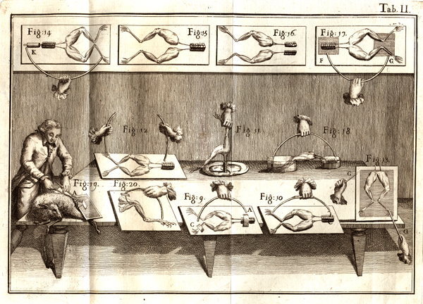 Illustration Of Italian Physician Luigi Galvanis Experiments In Which He Applied Electricity To Frogs Legs From His Book De Viribus Electricitatis