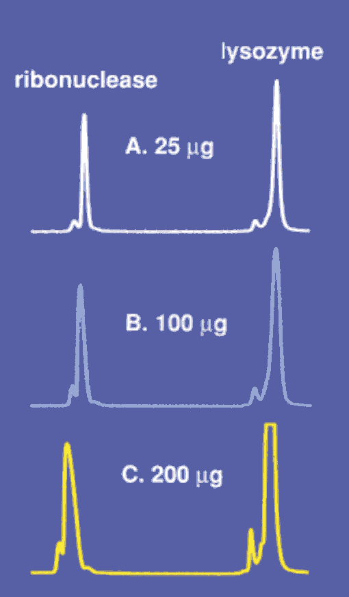 an introduction to the gel filtration chromatography Size exclusion chromatography / gel permeation chromatography: an introduction chromatography (gpc) or gel filtration (gf).