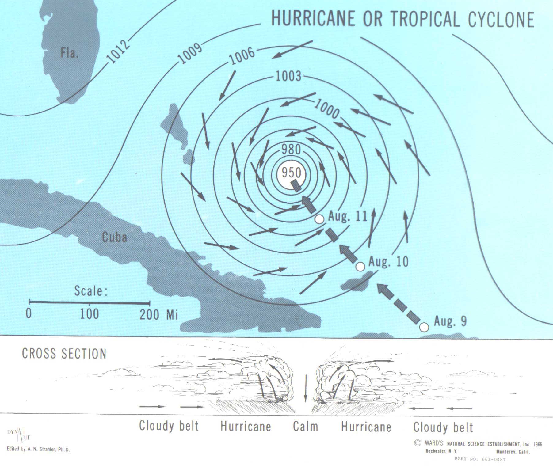 Hurricane or Tr... Manganese Nodules Ocean Floor